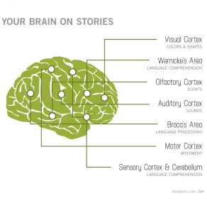 marketing-as-storytelling-brain-on-stories